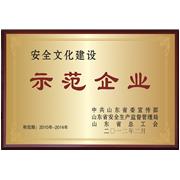 山东省安全文化建设示范企业