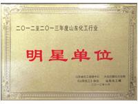 """公司获得""""2012—2013年度山东化工行业明星""""称号"""